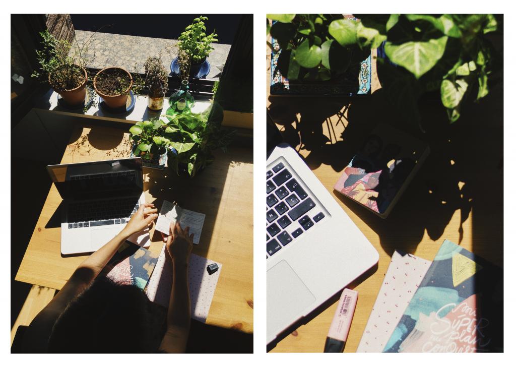 freelance desk work from home plants laptos